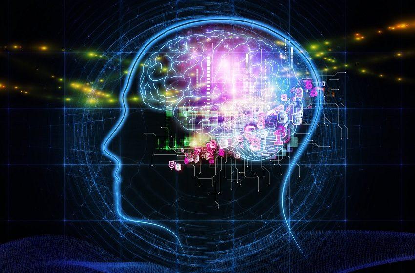 Plataforma de educação médica investe em IA para curadoria de conteúdo