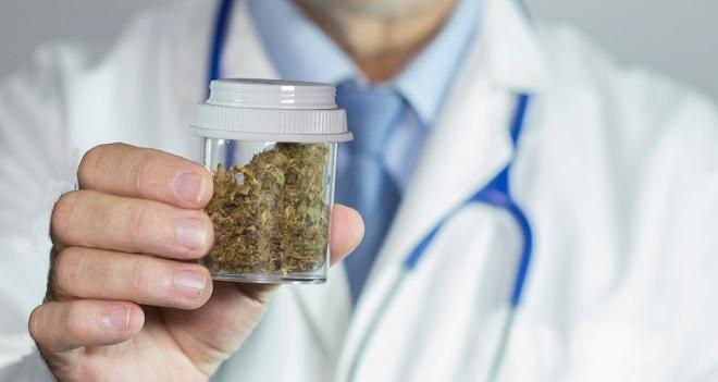 79% dos brasileiros são a favor da distribuição da cannabis pelo SUS