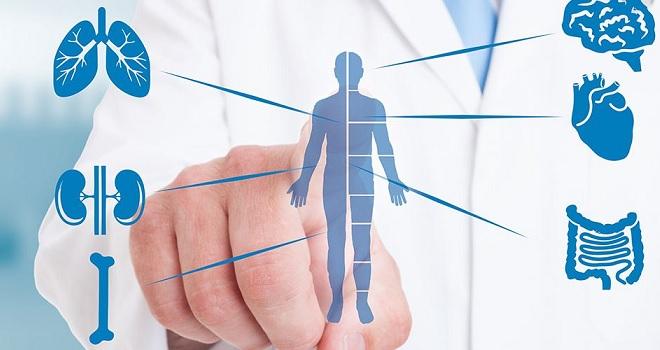 Projeto de lei autoriza retirada de órgãos doados em vida