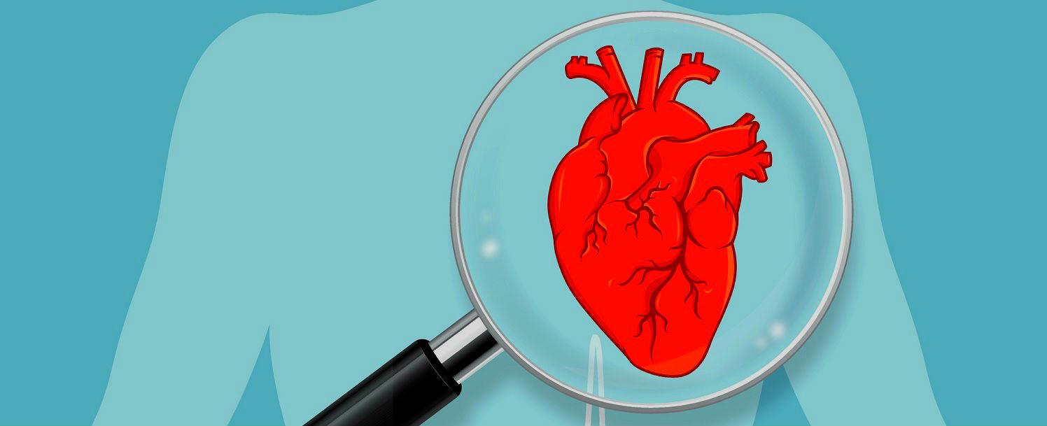 Calculadora de risco prevê chance de morte em cirurgia cardíaca