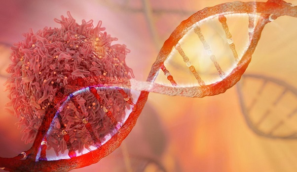 Estudo aponta aumento do câncer na população entre 20 e 49 anos