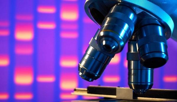 USP e Harvard criam bateria de gelatina para uso médico