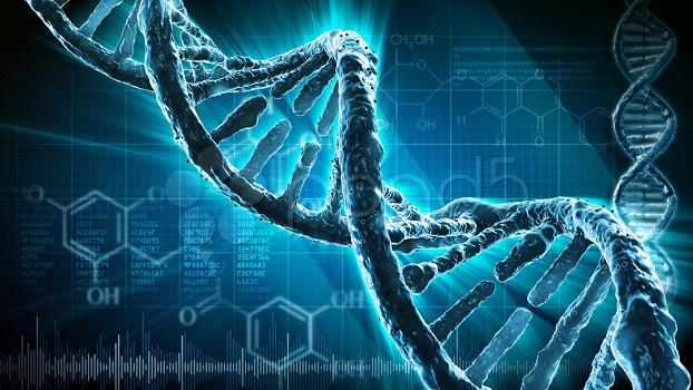 Teste detecta alterações cromossômicas que causam aborto espontâneo