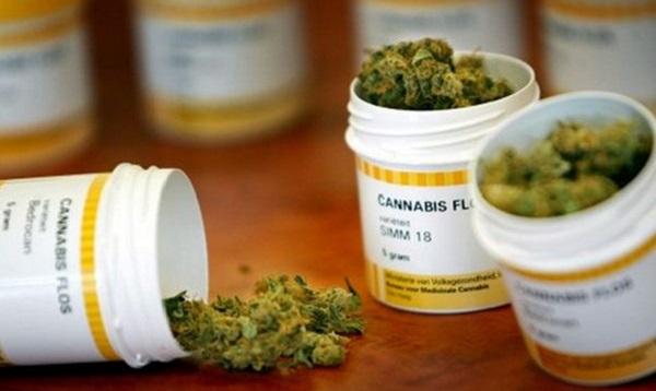 EaseLabs investirá R$30 milhões em medicamentos à base de canabidiol