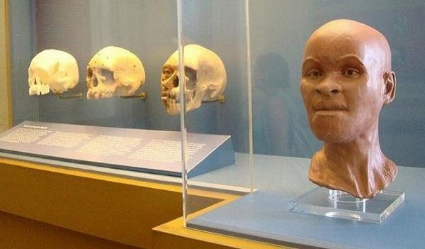 Dasa e CDPI investem na reconstrução de peças do Museu Nacional