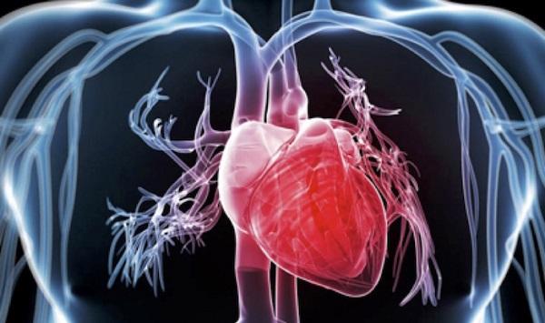 Especialista do Leforte lança livro sobre Cardioncologia na prática clínica