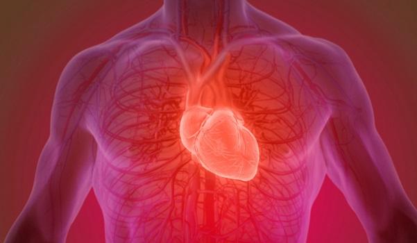 Simpósio internacional da BP discute casos clínicos raros em Cardiologia