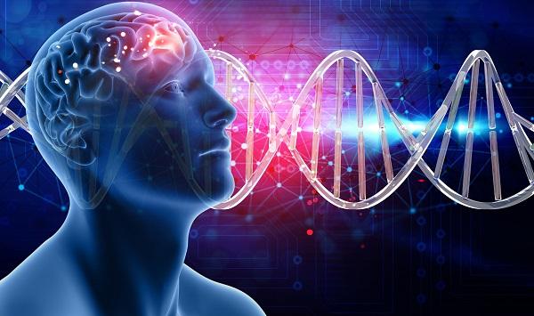 DNA do Brasil mapeará genoma de 15 mil pessoas