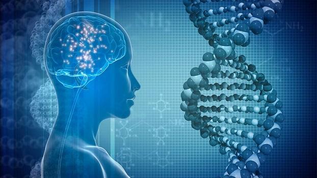 Inscrições abertas para o II Congresso Brasileiro de Neurogenética 2020