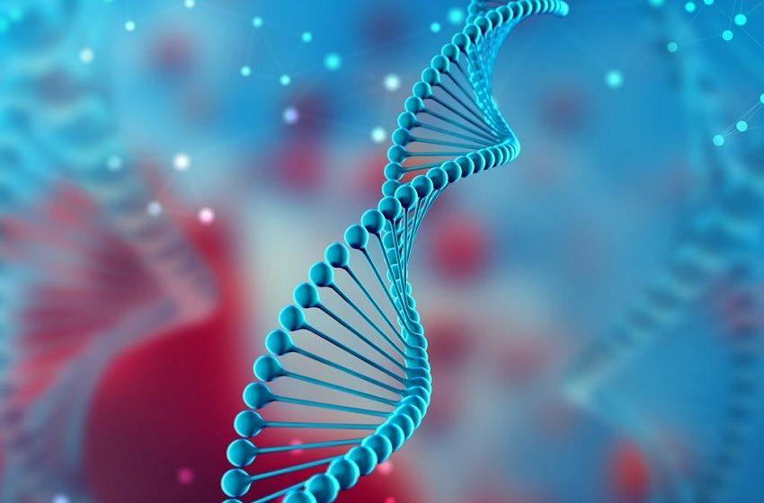 Evento debate acesso a testes genéticos e medicina de precisão
