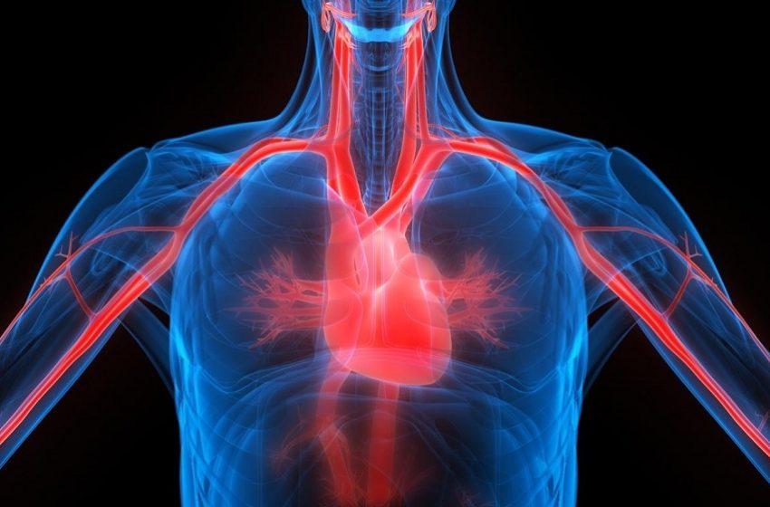 SBC e Arpen divulgam dados sobre mortalidade cardiovascular durante a pandemia