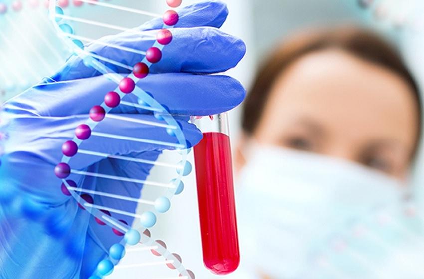 Artigo retrata Benchmarking na medicina laboratorial