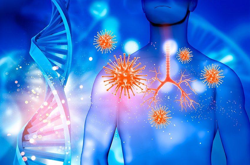 Coronavírus: Hi Technologies promove webinar gratuito com infectologista