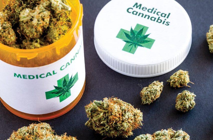 Paciente de baixa renda receberá do SUS medicamento à base de cannabis