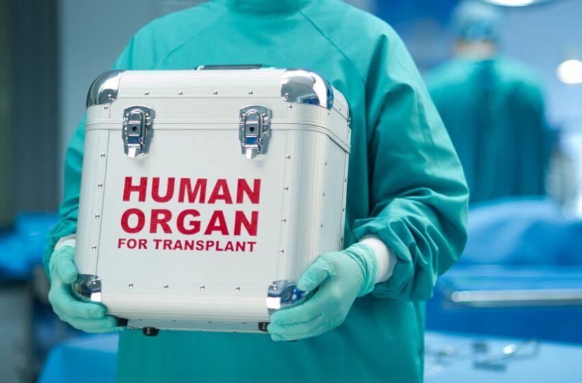 Doações de órgãos caíram 40% com pandemia