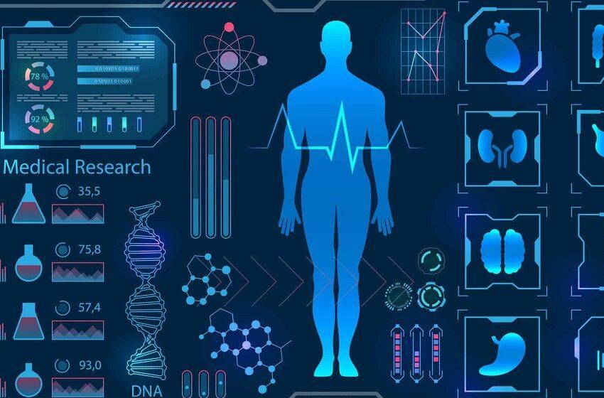 Bayer vai acelerar startup que usa IA para coletar dados clínicos