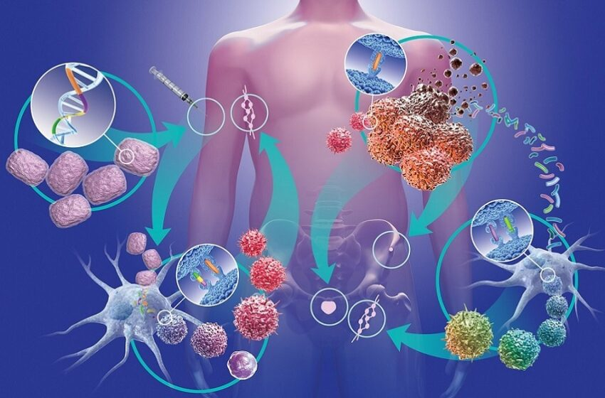 Biópsia líquida amplia possibilidades de terapias para pacientes com câncer