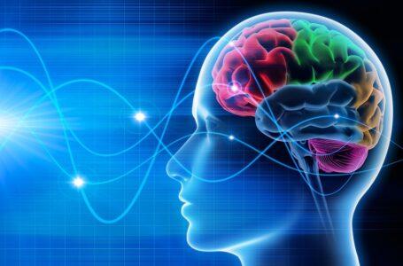 Biogen lança plataforma para médicos sobre neurociência