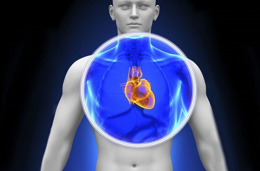 Congresso debate cardiotoxicidade por conta de tratamento oncológico