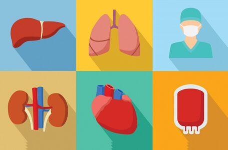 Diretrizes para manejo de doadores de órgãos em morte encefálica