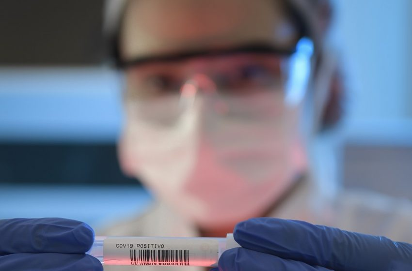 Maior estudo epidemiológico sobre a Covid-19 no Brasil chega à fase final