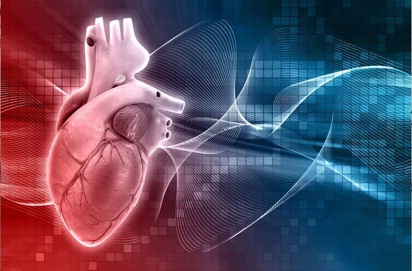 Programa de boas práticas clínicas em cardiologia certifica hospitais do SUS