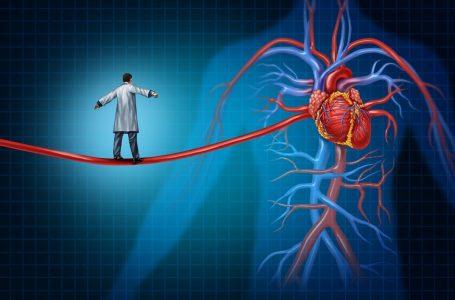 SBC lança treinamento de emergências cardiovasculares inédito