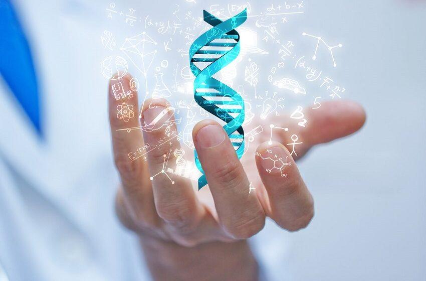 Sommos DNA lança teste genético cardiológico