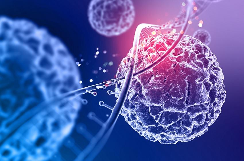 Einstein promove simpósio on-line sobre Hemoterapia e Terapia Celular