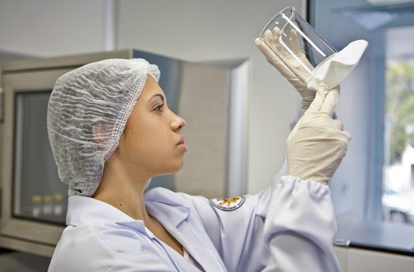 São Lucas lança 1º centro de coletas de células-tronco mesenquimais